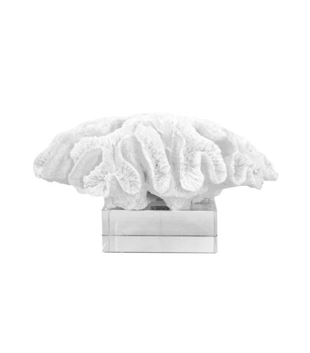 Two's Company White Brain Coral Porcelain Sculpture