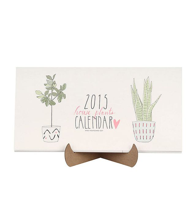 Emily Grace Johnson 2015 House Plants Postcard Calendar