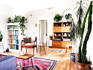 12 Gorgeous Spaces That Prove Houseplants Are Where It's At