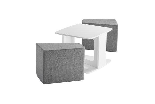 CB2 + SAIC Deep Dish Table and Set of 2 Cushions