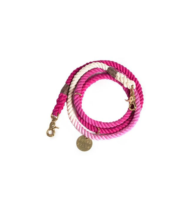 Found My Animal Magenta Ombre Rope Dog Leash