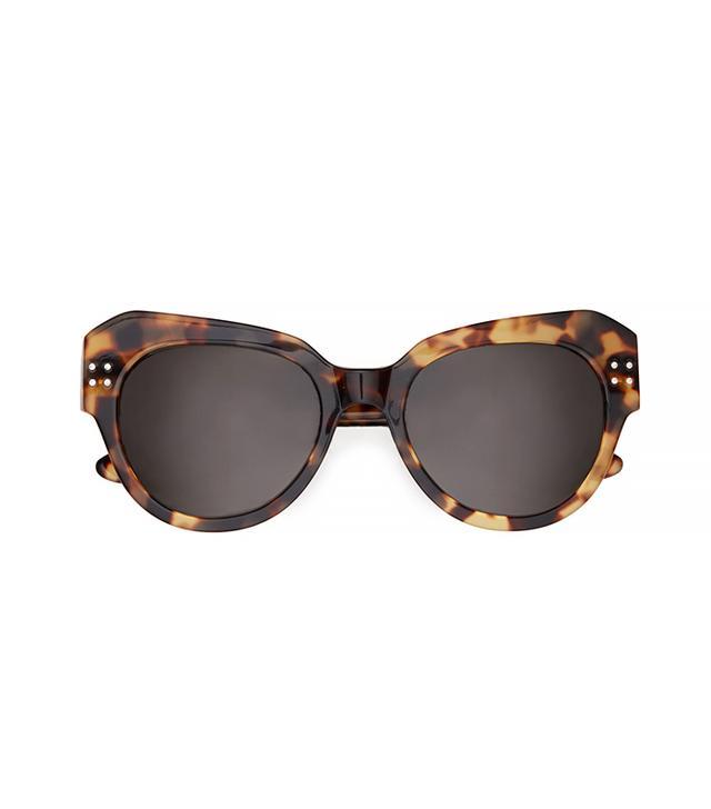 Fall Winter Spring Summer Steven Sunglasses in Havana Tortoise