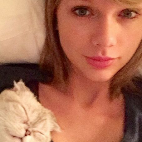 Find Out Why Taylor Swift's Cat Owes Her $40 Million