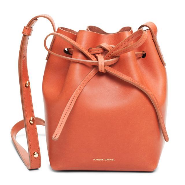 Mansur Gavriel Mini Leather Bag in Randy