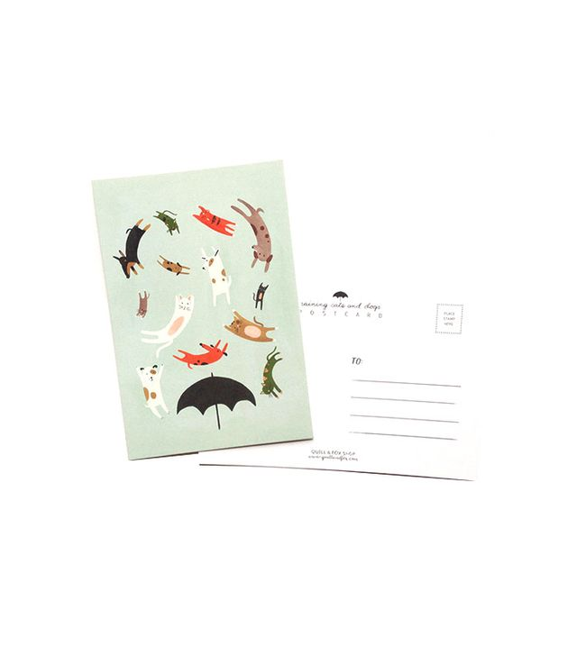 Quill & Fox Raining Cats and Dogs Postcard 8 Pack