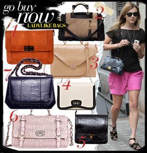 Ladylike Bags
