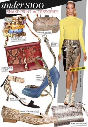 Snake-Print Accessories