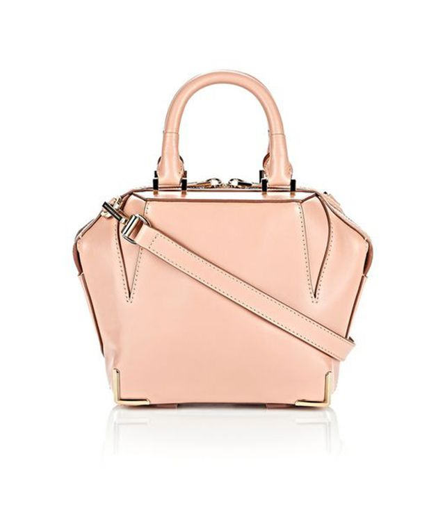 Alexander Wang Mini Skeletal Emile Bag