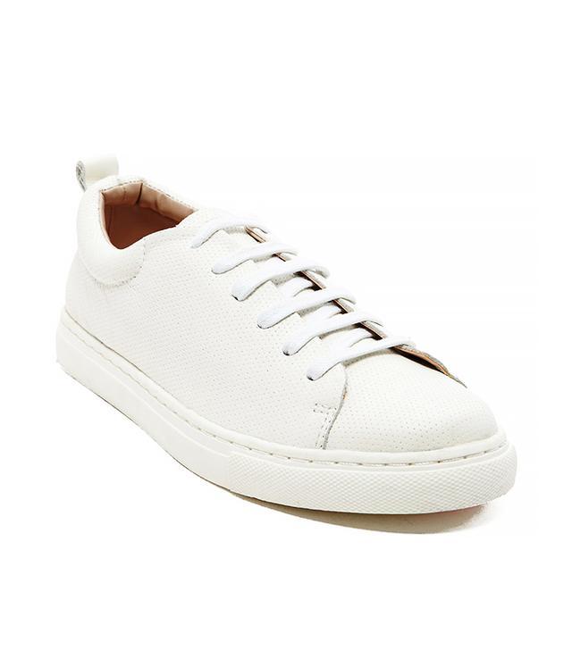 Dolce Vita Oriel Sneakers