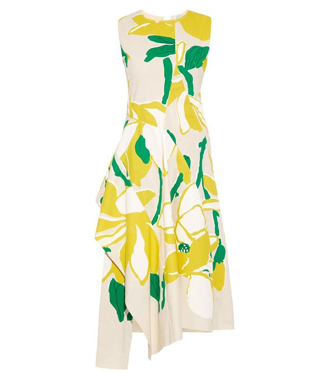 Marni Capucine Floral-Print Dress