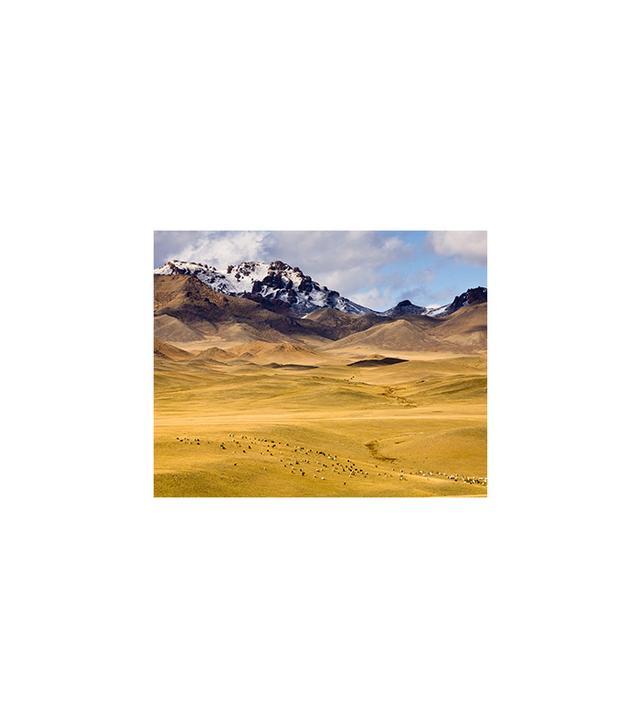"""Gobi, Mongolia"" by Ashok Sinha"