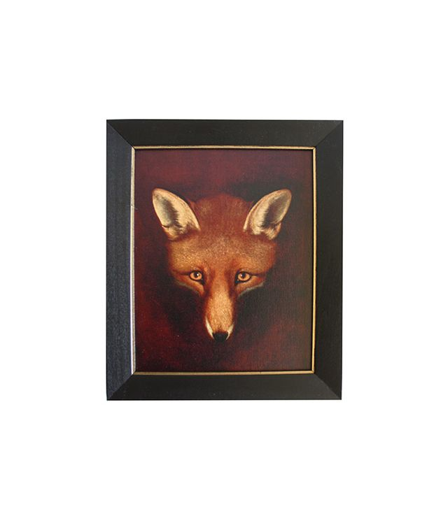 High Street Market Framed Fox Portrait