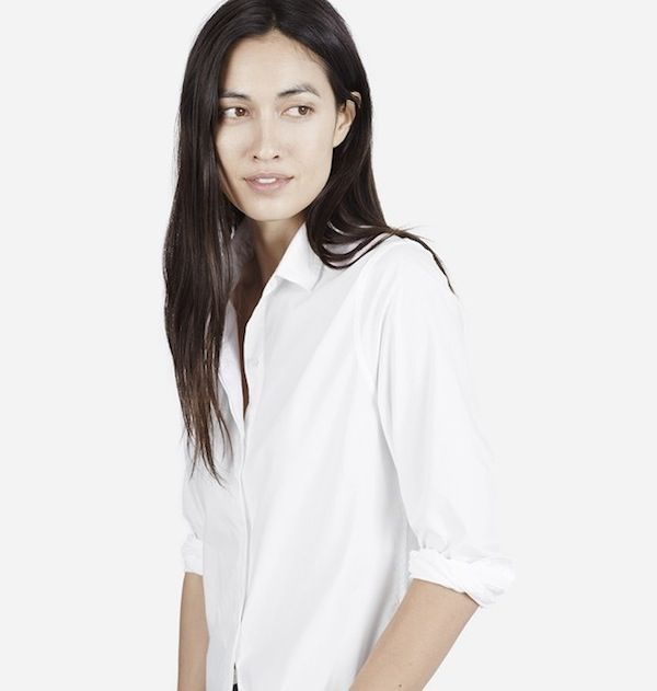 Everlane The Long Sleeve Shirt