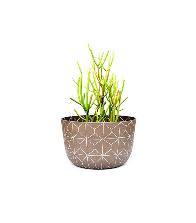 Workaday Maurice Planter