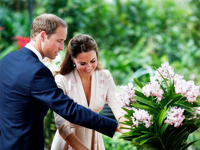 Guess How Much Will and Kate's Yearly Allowance Is