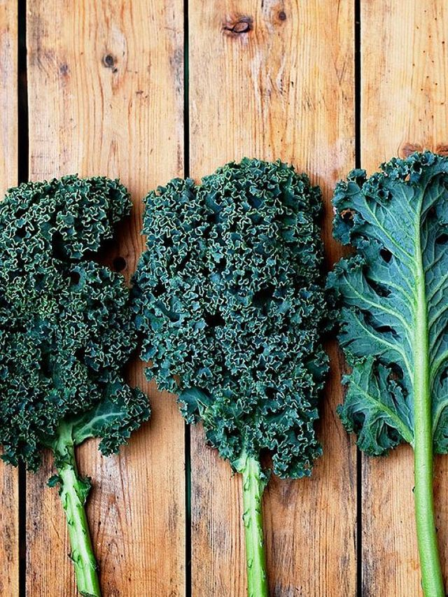 The Disturbing Truth About Kale