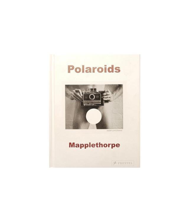 Polaroids, Mapplethorpe by Sylvia Wolf