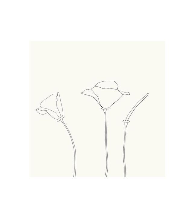 """California Poppy"" by Jorey Hurley"