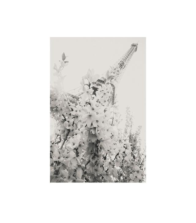 "Minted ""Springtime in Paris"" by Lindsay Ferraris"