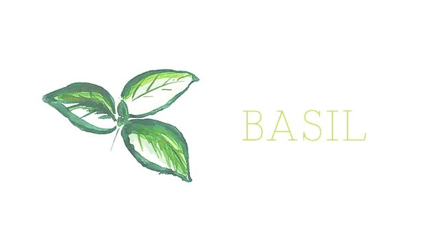 This plant is trickyyet entirely doable. The basil varieties most suited for indoor growth are the Spicy Globe or African Blue. Don't mind the thin leaves of the African Blue variety....