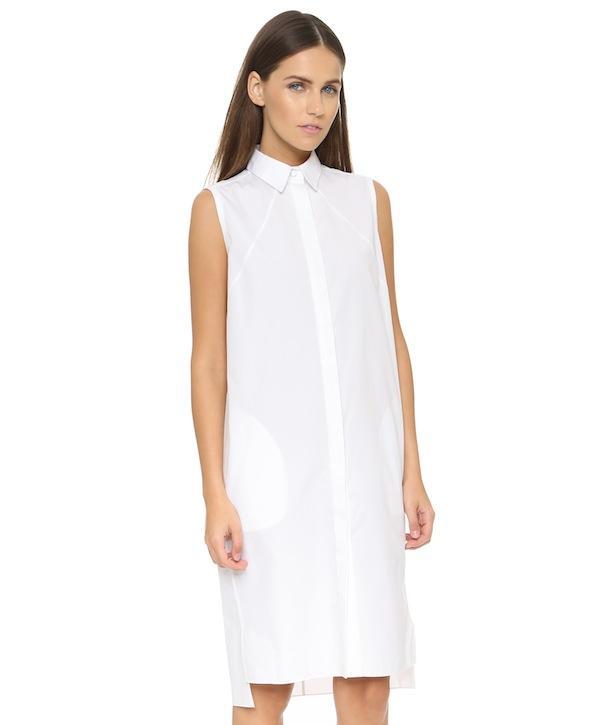 Rag & Bone Victoria Dress