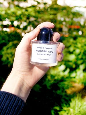 12 Cozy Fragrances That Smell Like Fall
