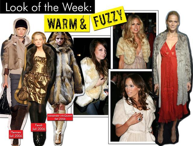 Warm & Fuzzy