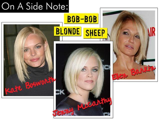 Bob Bob Blonde Sheep