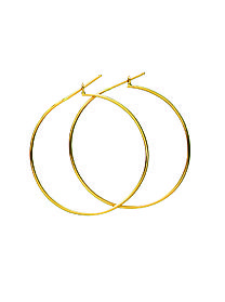 Jennifer Fisher  Skinny Hoops