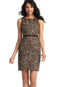 Loft  Loft Leopard Print Grosgrain Waist Sheath Dress