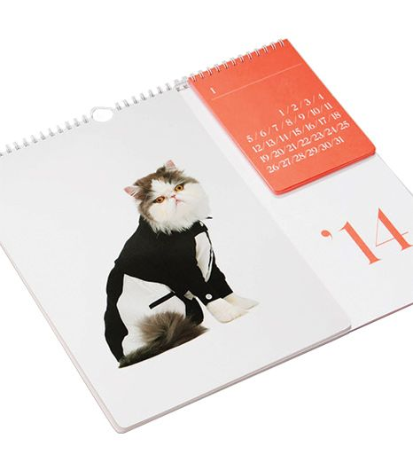 United Bamboo  2014 Cat Calendar