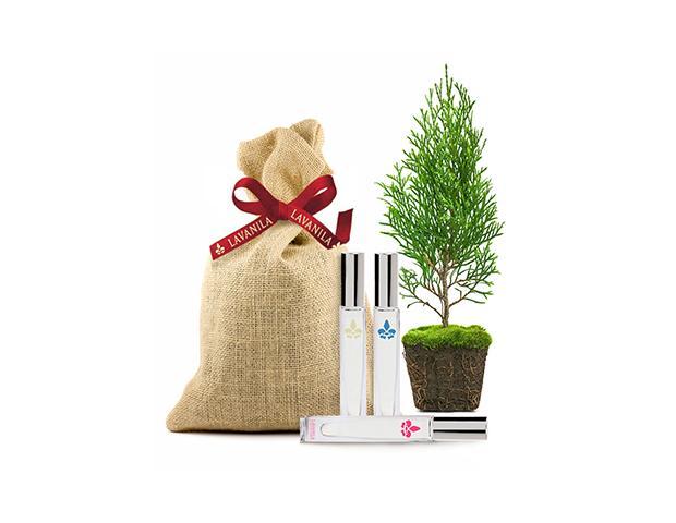 Lavanila Holiday Tree-O