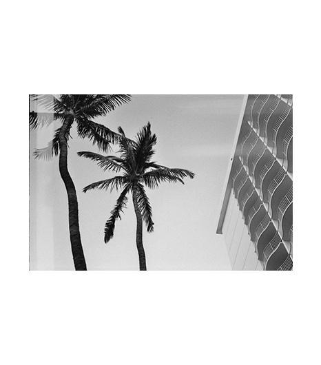 Issac Zoller  Issac Zoller Hawaii Photograph ($50)