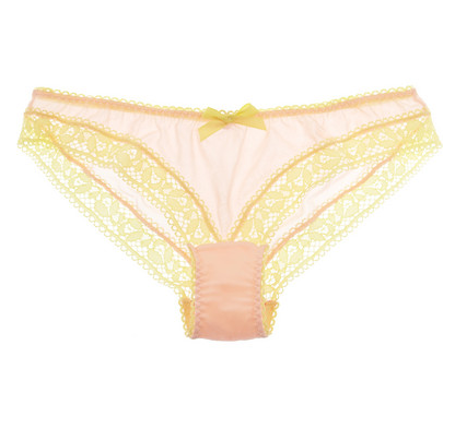 Agent Provocateur  Sierra Chiffon and Lace Briefs