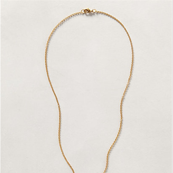 Anthropologie  Golden Beetle Necklace