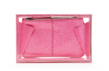 Beirn  Clear Watersnake Box Clutch