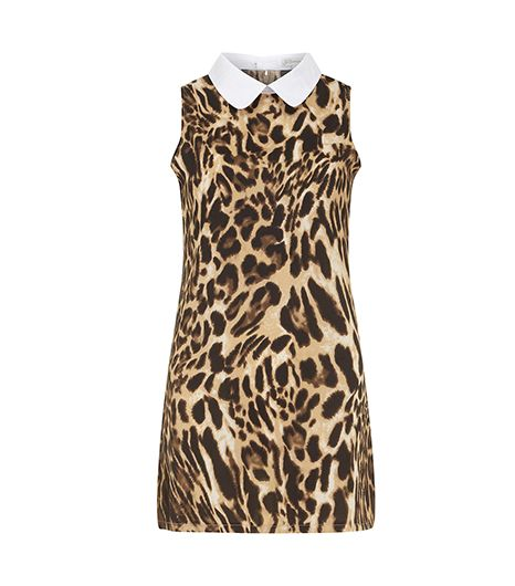 Dorothy Perkins  Animal Collared Shift Dress