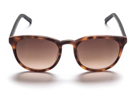 Sunday Somewhere Alita Sunglasses
