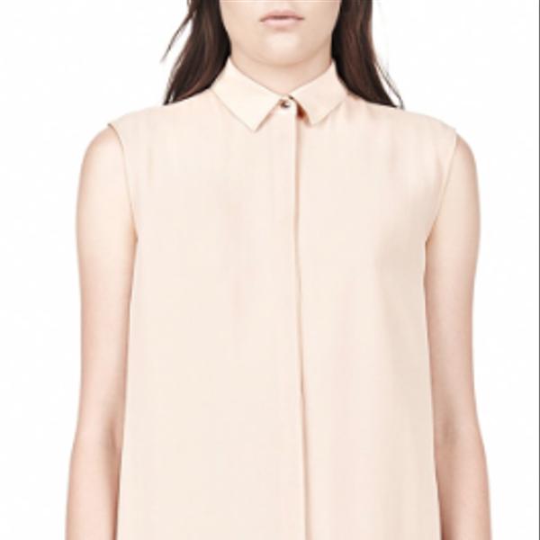 Alexander Wang Silk Chiffon Shirt Dress