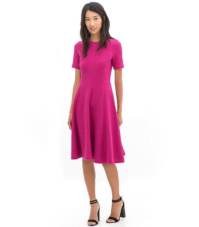 Zara Flared Short-Sleeved Dress
