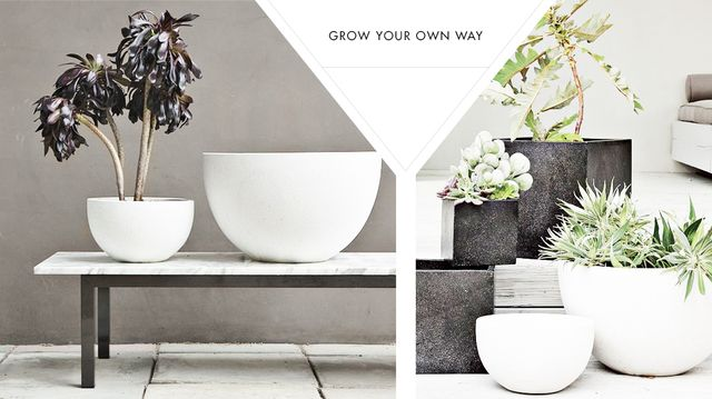 Must-Have Modern Planters