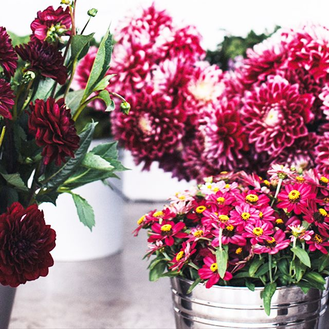 How To Create a Wild-Styled Floral Arrangement