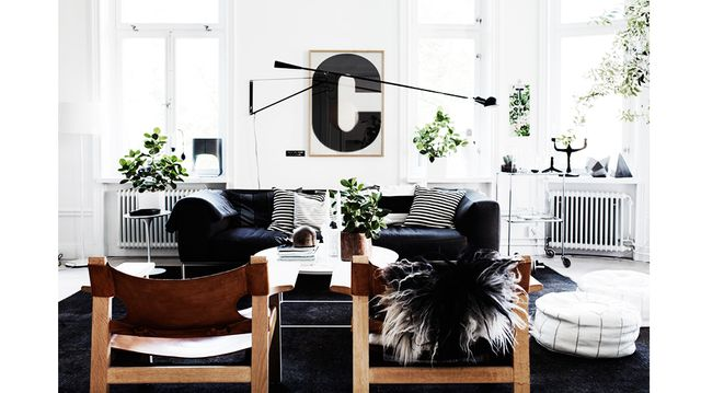 Shop the Room: High-Contrast Salon