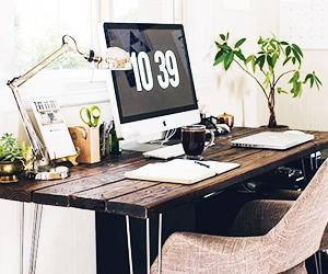 The Best Low Light Plants For Your Desk Mydomaine