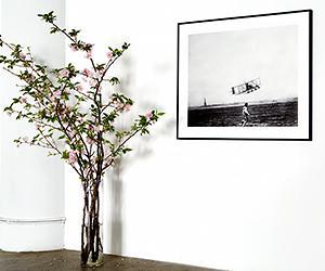 John Derian Unveils a Historic New York Project