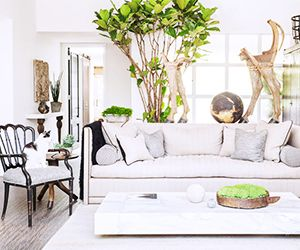 Tour a Calm and Collected LA Bungalow